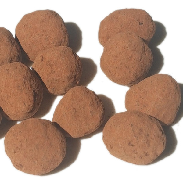Noisettes enrobées de chocolat